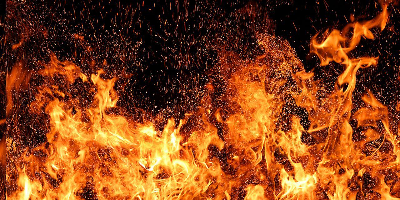 (Foto: farbkombinat - stock.adobe.com)